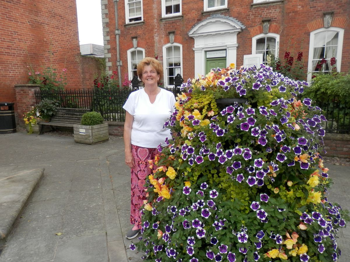Councillor Viv Parry, chair of Ludlow in Bloom, is appealing for help getting the town's floral displays planted.
