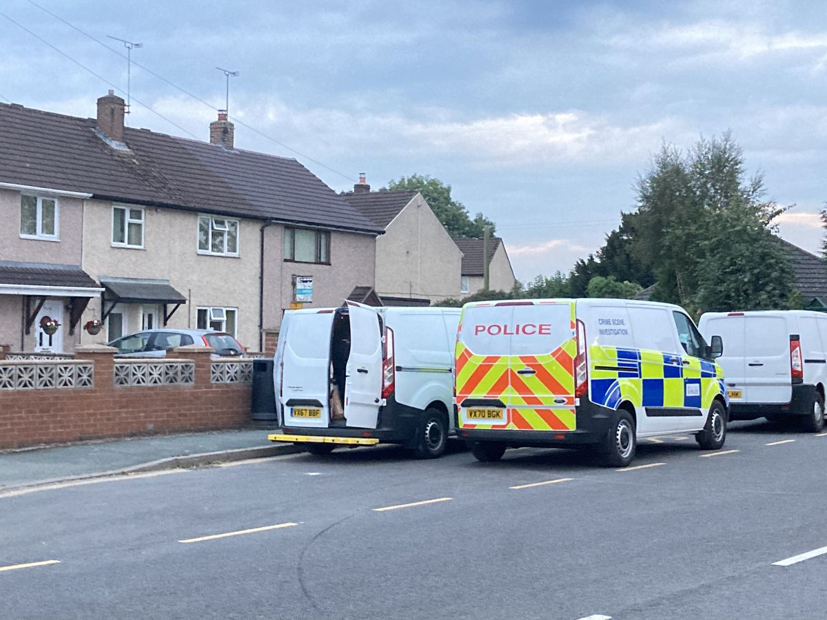 Police and forensic vans in St Martins