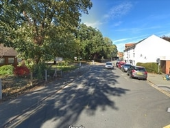 Tree pruning approved in Newtown