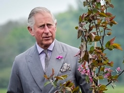 Charles hopes climate change does not 'destroy' his green efforts