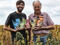 Grain reigns as quinoa grown near Ellesmere heading for Shropshire plates