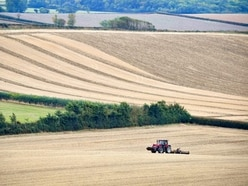Calls for focus on farm safety as 39 killed in a year