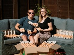 Lovebirds hatch plan to make eggstra cash