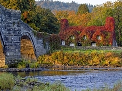 In Pictures: Nature changes palette as astronomical autumn begins