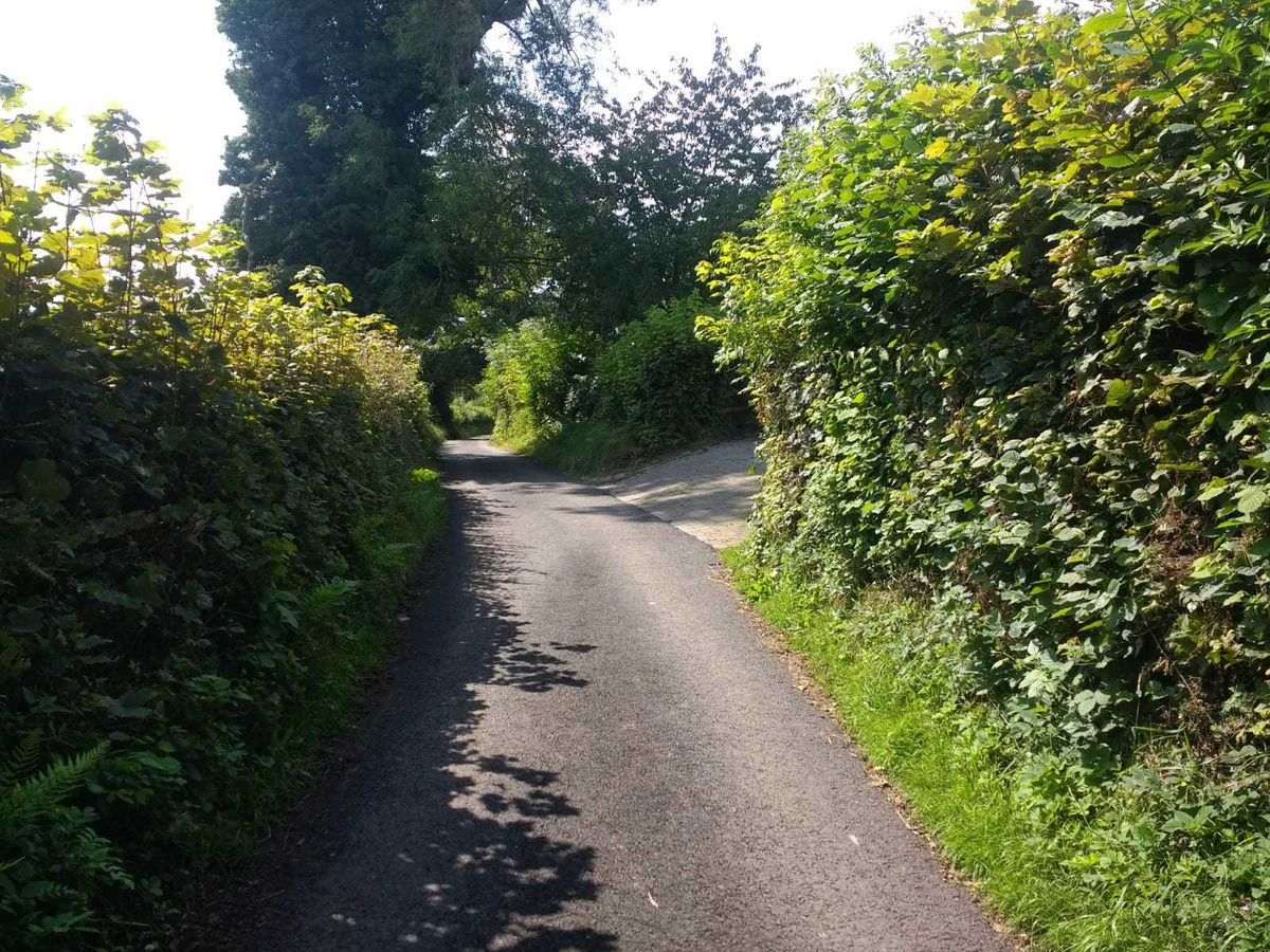 The resurfaced country lane in Trefonen