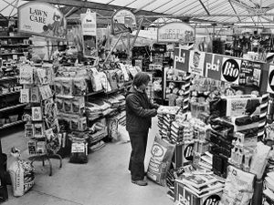 nostalgia pic. Shrewsbury. Bayleys Garden Centre, Shrewsbury, on March 14, 1980. This is a print in the Shropshire Star picture archive. The picture was published on March 21, 1980, the location being described as alongside the A49 between Shrewsbury and Bayston Hill. The print has the Shropshire Star copyright stamp and the photographer was 'Dave', possibly Dave Goodwin. Garden centres. Library code: Shrewsbury nostalgia 2020..