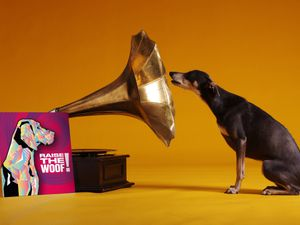 Raise The Woof! is a Christmas song for dogs