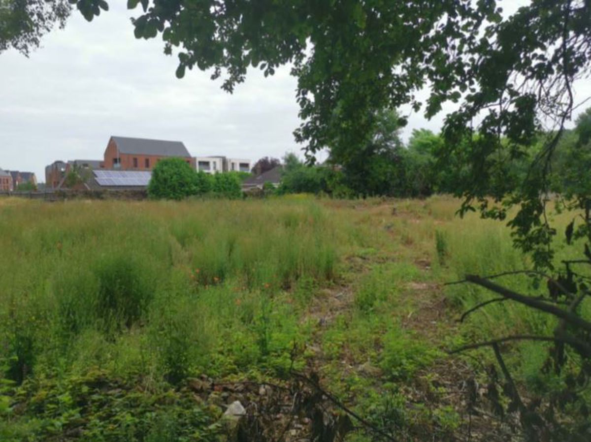 The site in Ketley earmarked for homes
