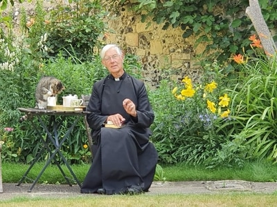 Cat broadcast during online prayer service stealing vicar's milk