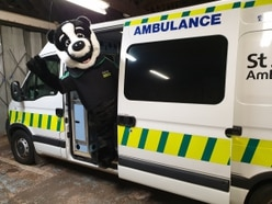 Bertie to help raise first-aid awareness in Shropshire
