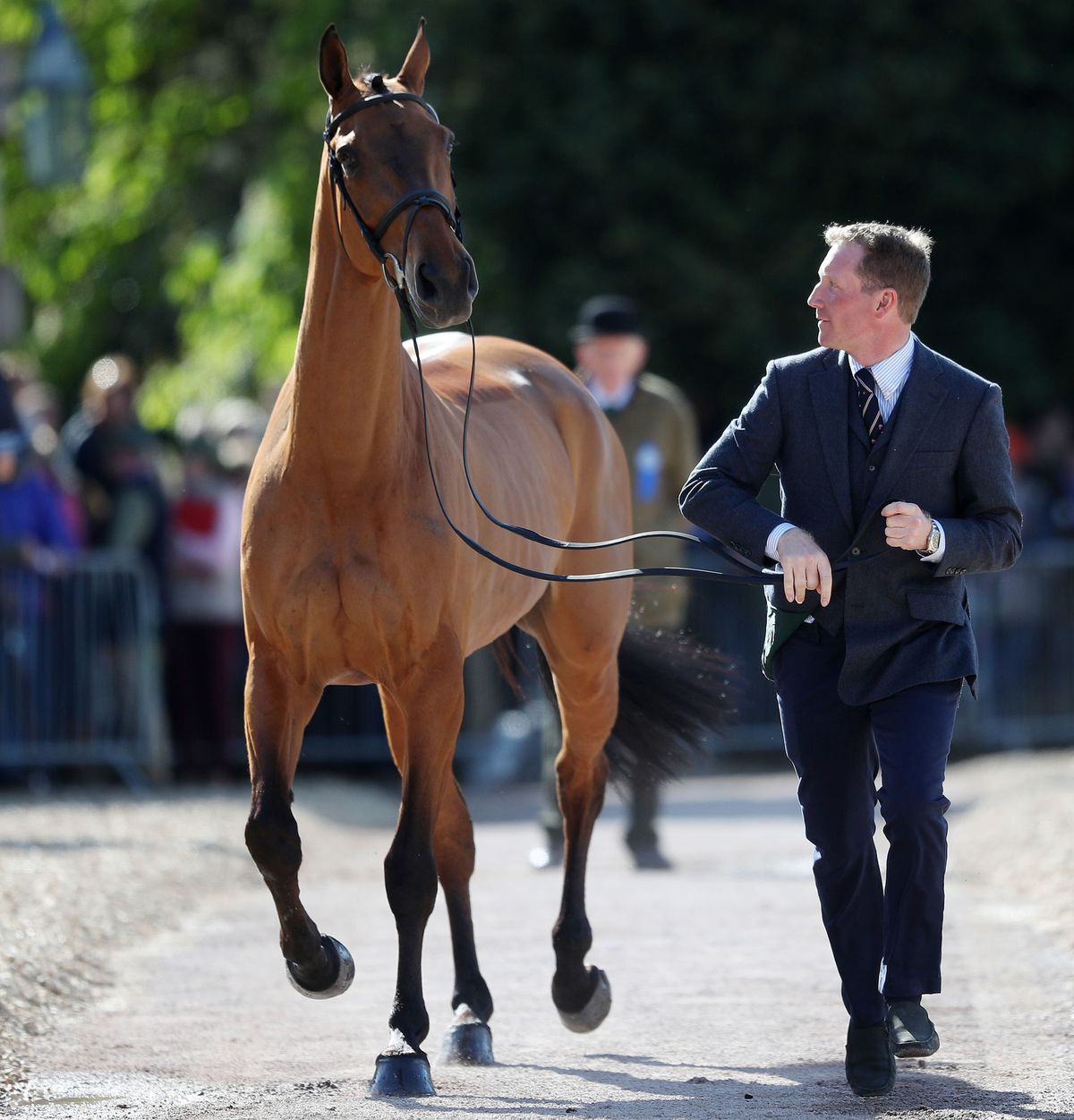 Oliver Townend with Cooley SRS in the trot up during day one of the Mitsubishi Motors Badminton Horse Trials