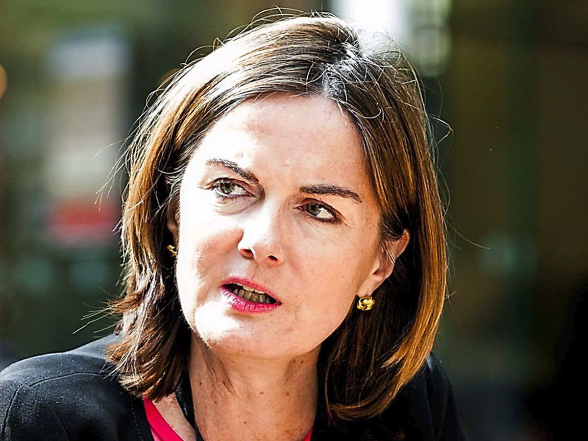 Telford MP Lucy Allan has attacked the decision to free Ali