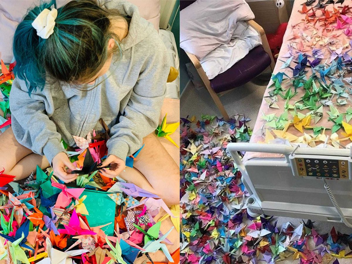 Sophie Aldred and her 1,000 paper cranes