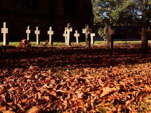 Gravestones will be inspected