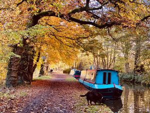 Joanna Hughes took this photograph of the Llangollen Canal near Ellesmere