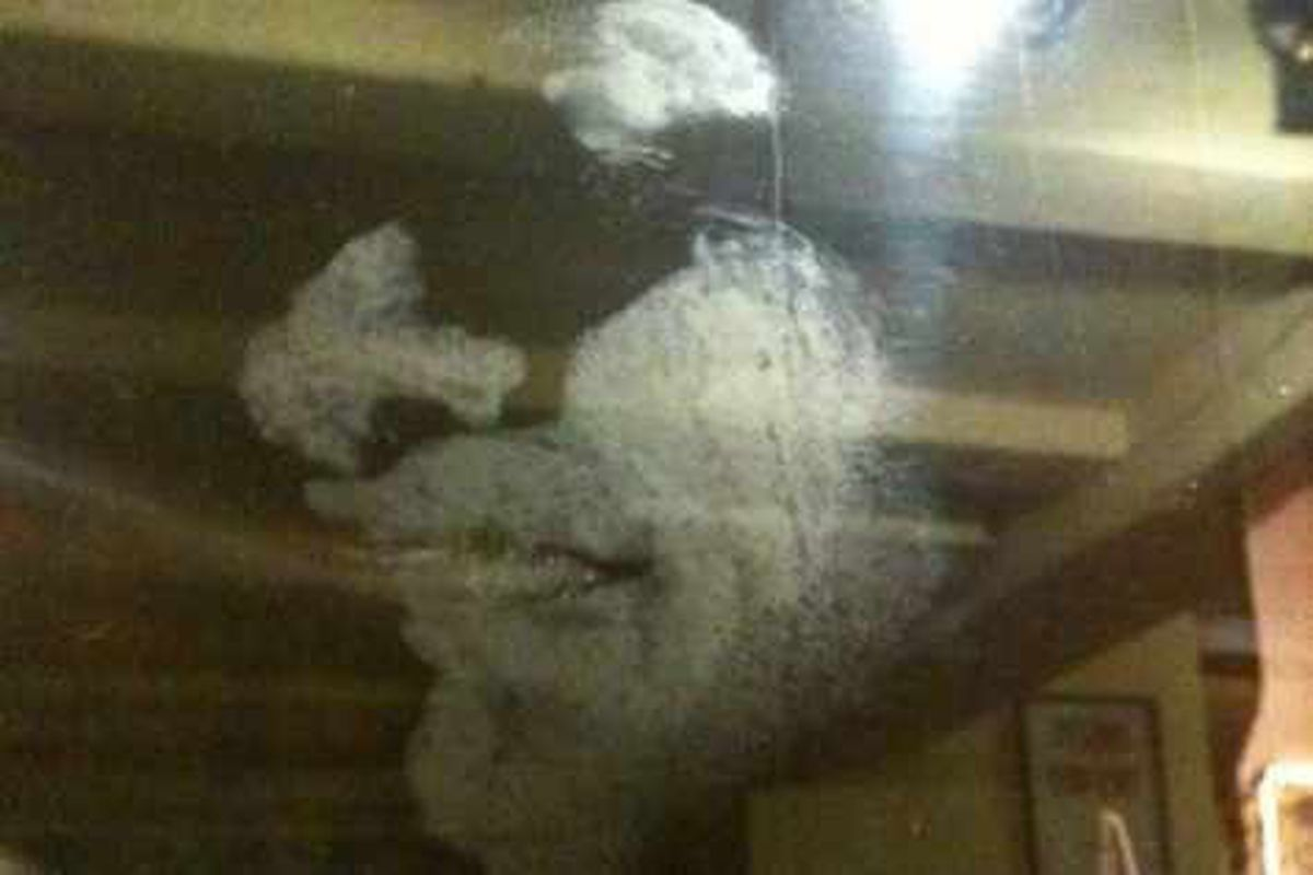 Mystery face appears in 'haunted' pub's window