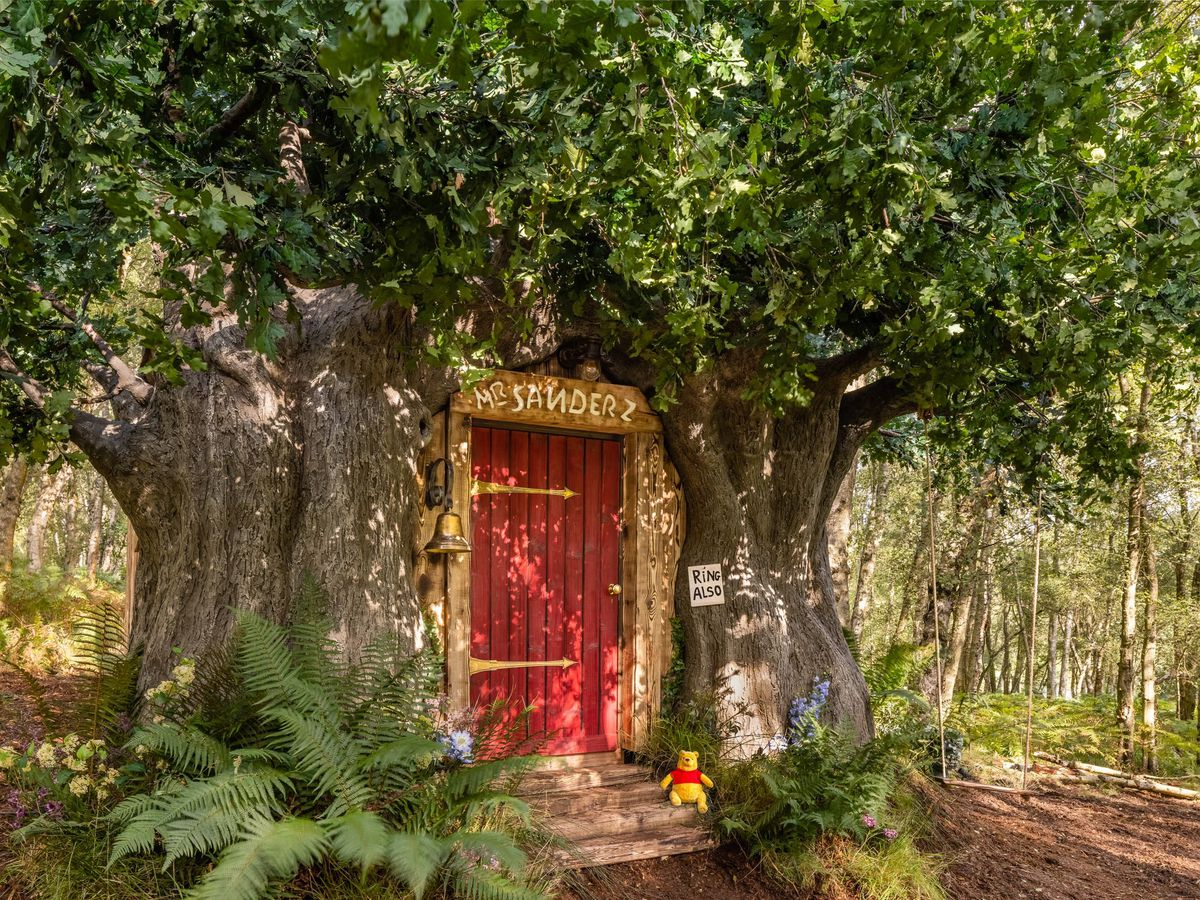 A Winnie-the-Pooh inspired house in Ashdown Forest