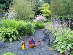 Vibrant gardens to open this weekend in Shropshire and beyond