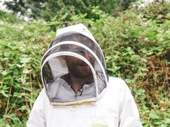 Unemployed construction worker turns love of bees into thriving brewery business