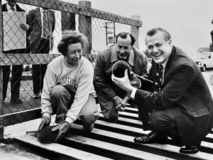 Major Adrian Coles, right, with his wife Pam, and  Simon Kenyon-Slaney, with two hedgehogs trying out the escape ramp in the new cattle grid which was officially opened at Clee Hill on October 18, 1982.