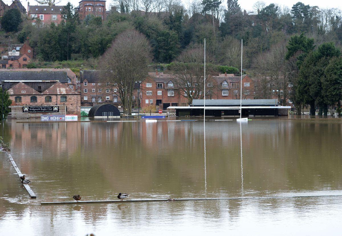 Flooding at Bridgnorth Rugby Club on Wednesday