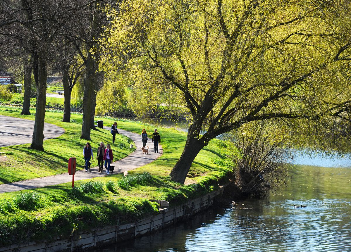 Strolling in the sunshine at The Quarry, Shrewsbury