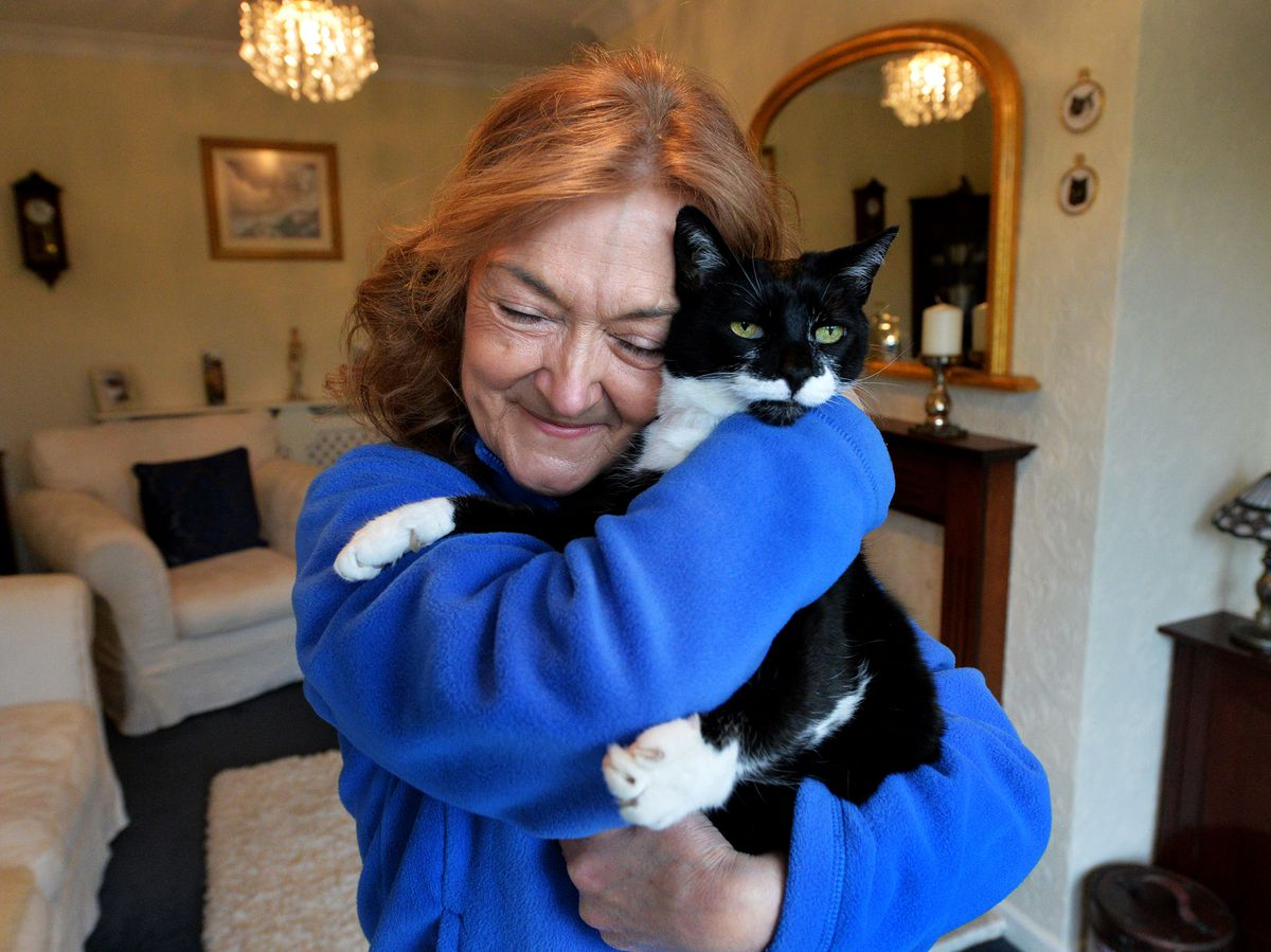 Cats Protection volunteer Trish Colvin with her own rescue cat Bonnie