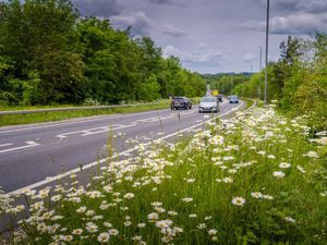 The Chirk bypass is shut everynight for the next month