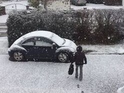 Snow hits Shropshire - with PICTURES