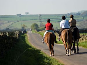 Horse riders urged to wear high-vis