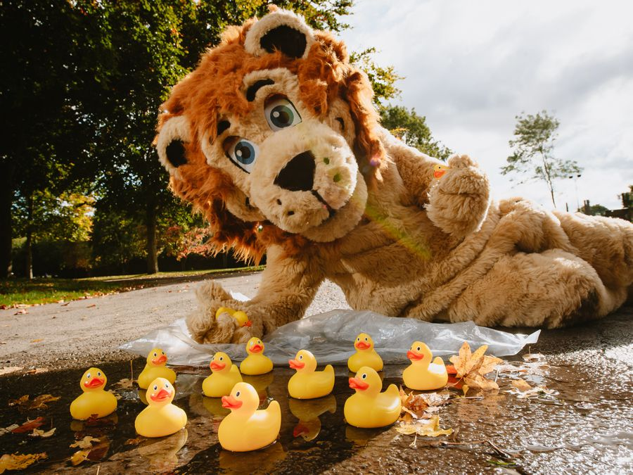 Lenny the Lion represents the Bridgnorth group's race