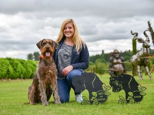 Alice Turnbull with Chilli and some of the trophies