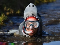 'Utterly ridiculous' bog snorkelling is a hit again