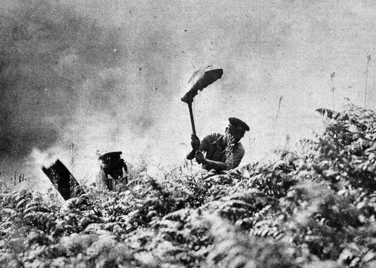 Firefighters battling flames on Haughmond Hill, near Shrewsbury, in August 1976
