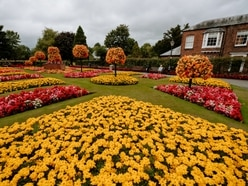 Sweet smell of success for blooming great volunteers in Oswestry