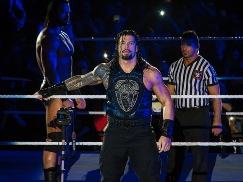 WWE Live, Resorts World Arena, Birmingham - review with pictures
