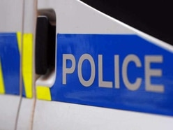 Search for man who 'tried to grab toddler' near Telford park