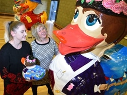 Telford's giant ducks raise £20,000 at charity auction
