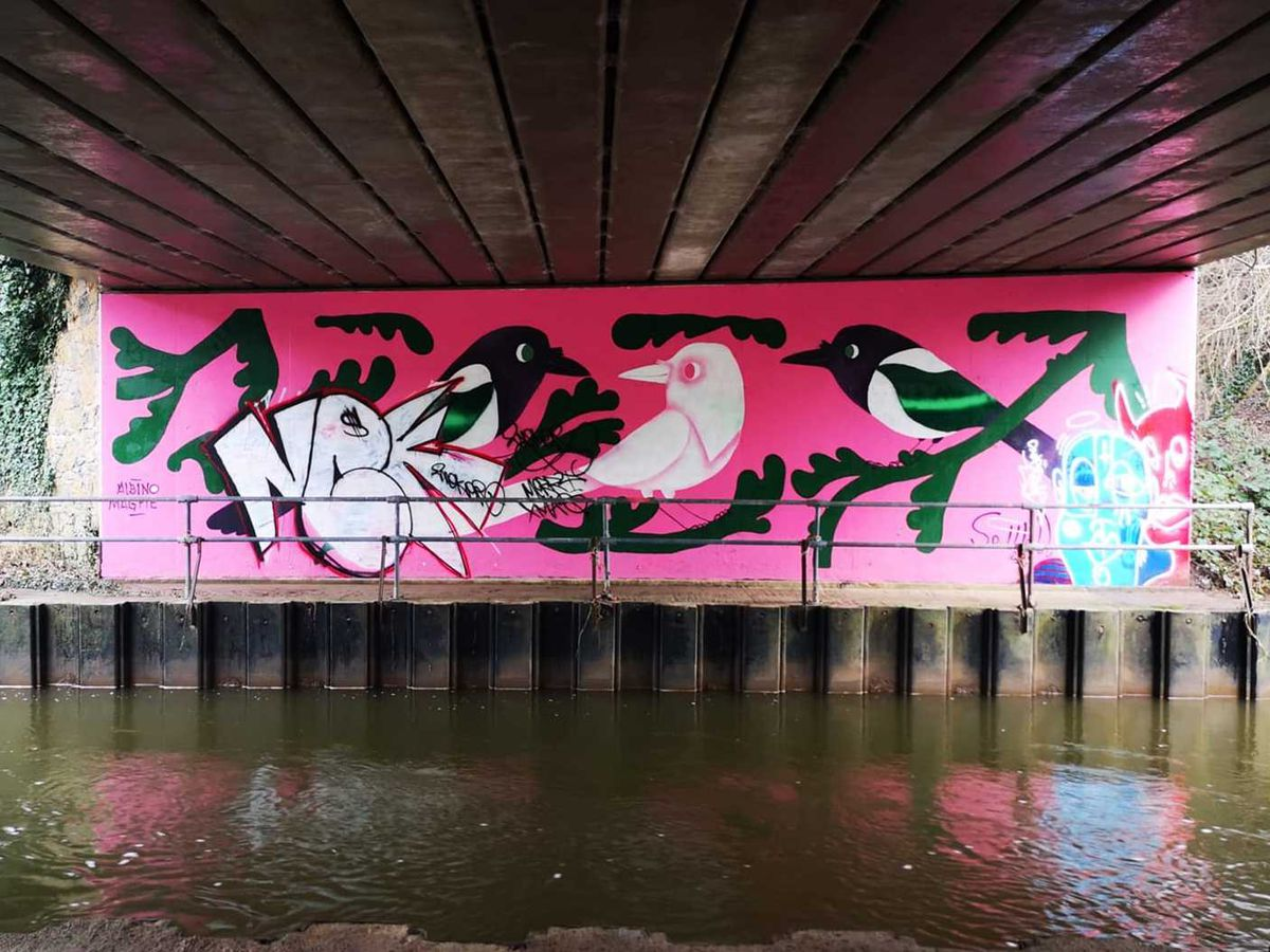 A mural dedicated to the white magpie has been vandalised. Picture by Tom Perring