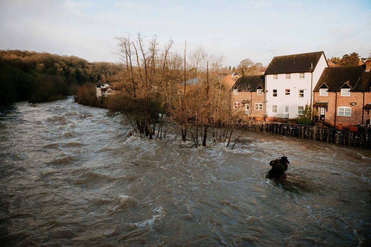 February's flooding on the River Teme