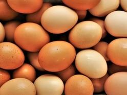 Talks over egg production unit plans near Shrewsbury