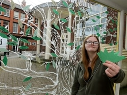 Tree of Hope for Oswestry's Homeless