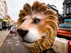 The wild Wyle Cop: Security guard hired to protect animal sculptures