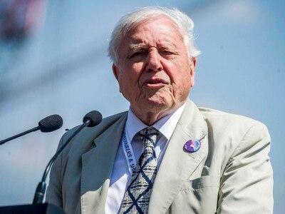 Sir David Attenborough calls for climate plan