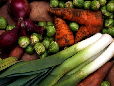 Vegetarian and vegan festival heading to Shrewsbury