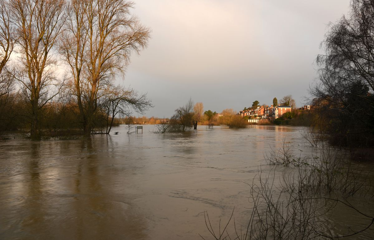 Shrewsbury flooding: The River Severn at Coton Hill as of 8am this morning. Pic: Russell Davies