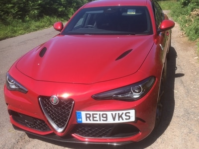 Alfa' red hot performer