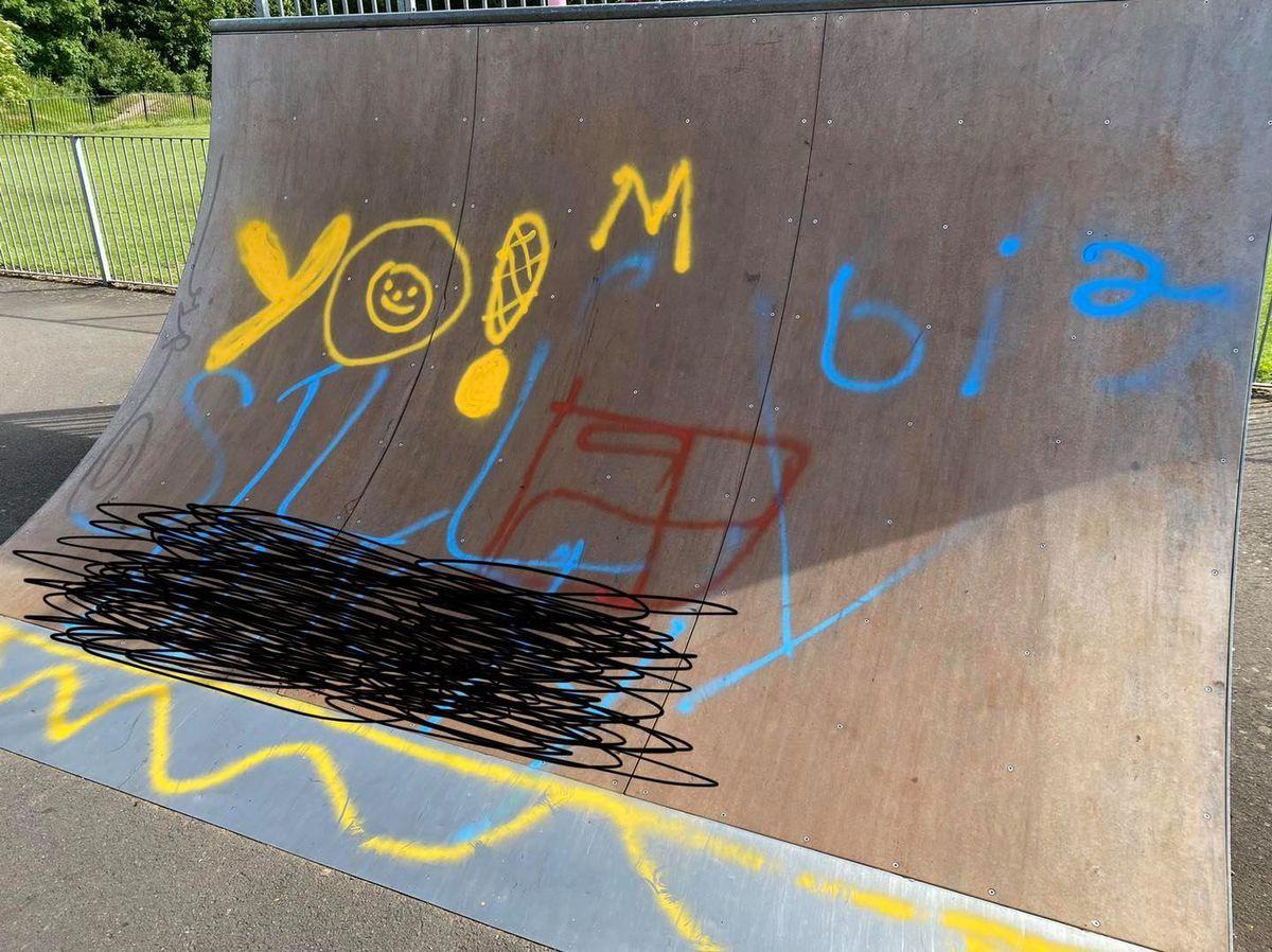 Graffiti at Newport Norbroom Park. Pic by Councillor Thomas Janke