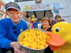 Bridgnorth set to go quackers with first duck race
