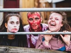 Life's a scream down on the farm: Screamfest actors ready for spooktacular Halloween